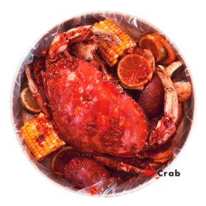 hollycrab_dungenesscrab